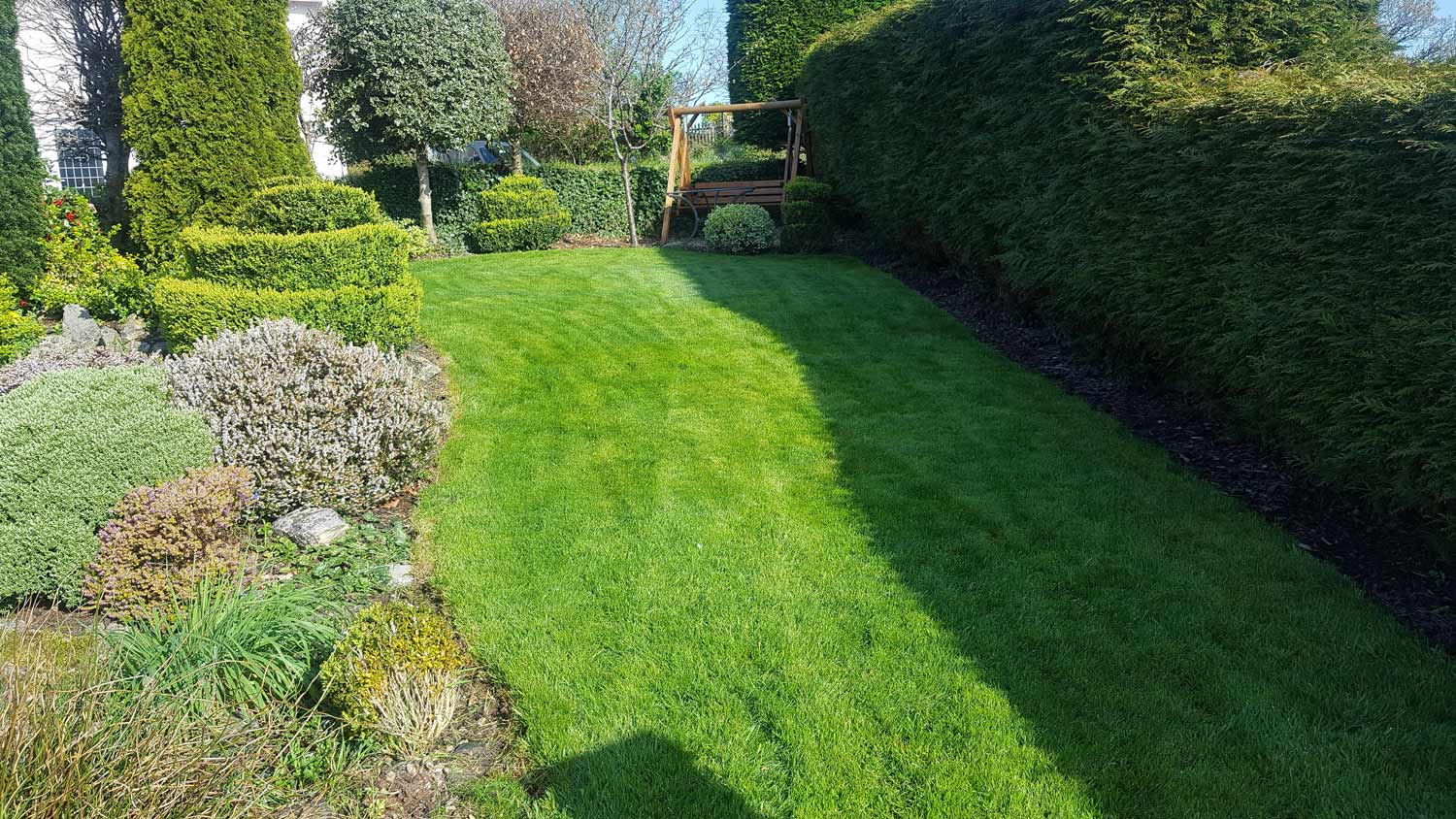 Lawn in Truro with perfect grass weed eradication