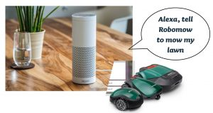 Alexa robomow functionality